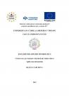 BCI H. Zárubová: English for Applied Informatics: učebné texty pre študentov bakalárskeho štúdia odboru Aplikovaná informatika Univerzita sv. Cyrila a Metoda v Trnave, Trnava, 2015, 86 str.